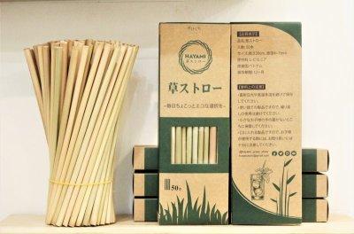 画像3: オーガニックコットン・Bee Eco wrap 蜜蝋ラップ Sサイズ 7デザイン